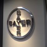 Bayer 13